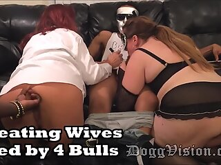cuckold Wives Used by four Bulls