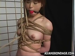 Asian in perfect rope knots treated to bdsm session